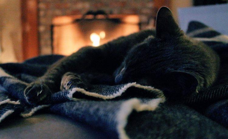 Chaleur confort cheminée