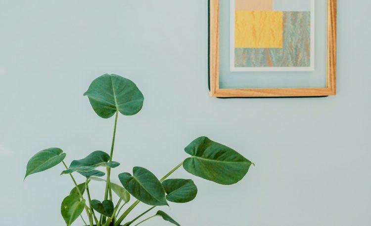 Les peintures vertes